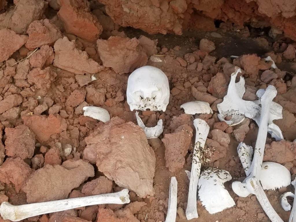 ossements adultes retrouvés près de la citadelle d'Antaymarca à Andagua
