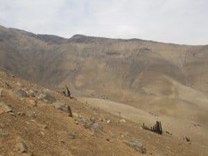 La montée vers le Cerro Mongon