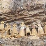 Chachapoyas sarcophages du tigre