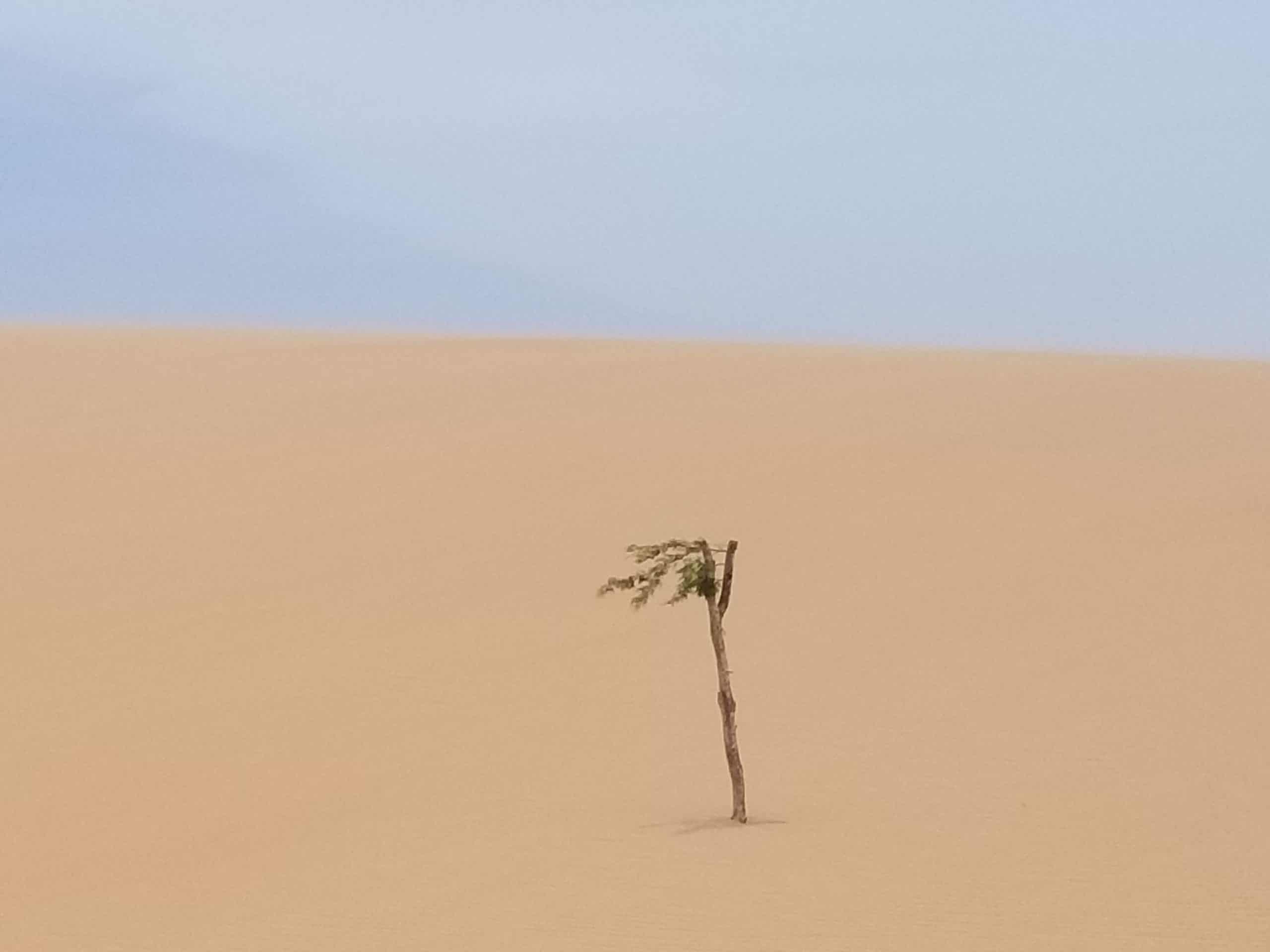 Etre climatosceptique est dangereux et irresponsable