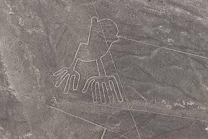 Nasca le géoglyphe de la grenouille