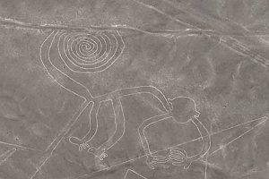 Nasca géoglyphe singe