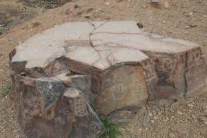 Ce qui semble être un autel dans la zone des pétroglyphes de Checta