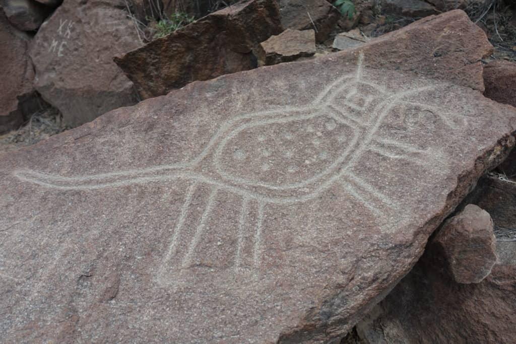 Le virus de la grippe sur un pétroglyphe à Checta