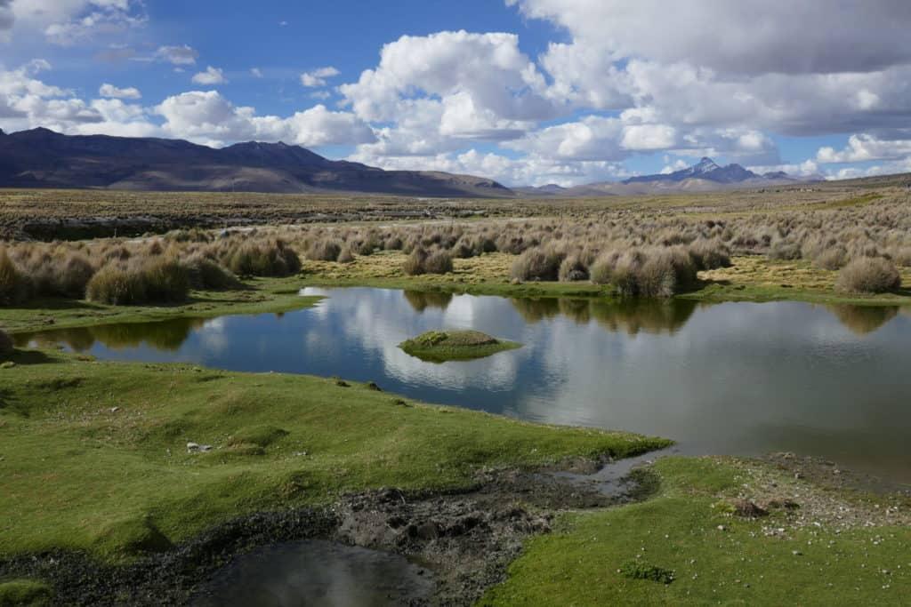 paysage de l'altiplano au Sajama, Bolivie
