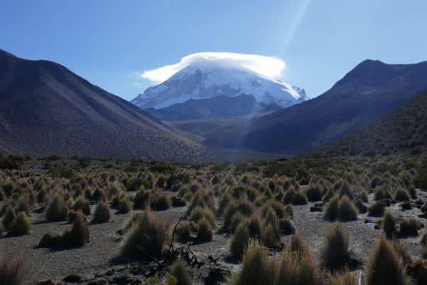 Sajama, la montagne aux mille curiosités et qui toise la Bolivie