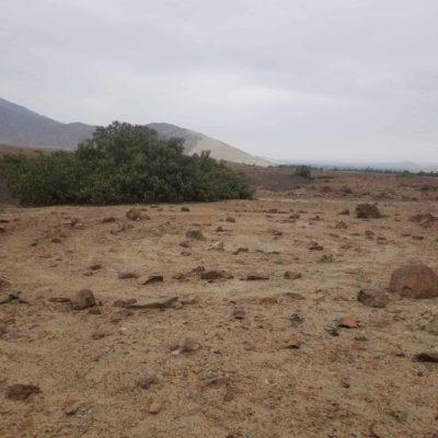 L'histoire de la destruction des géoglyphes de Santo Domingo au Pérou