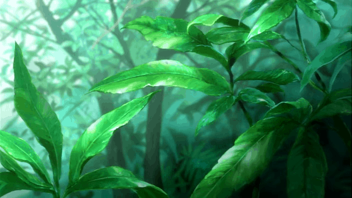 mushishi plantes