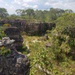 Serrania la Lindosa Guaviare Colombia